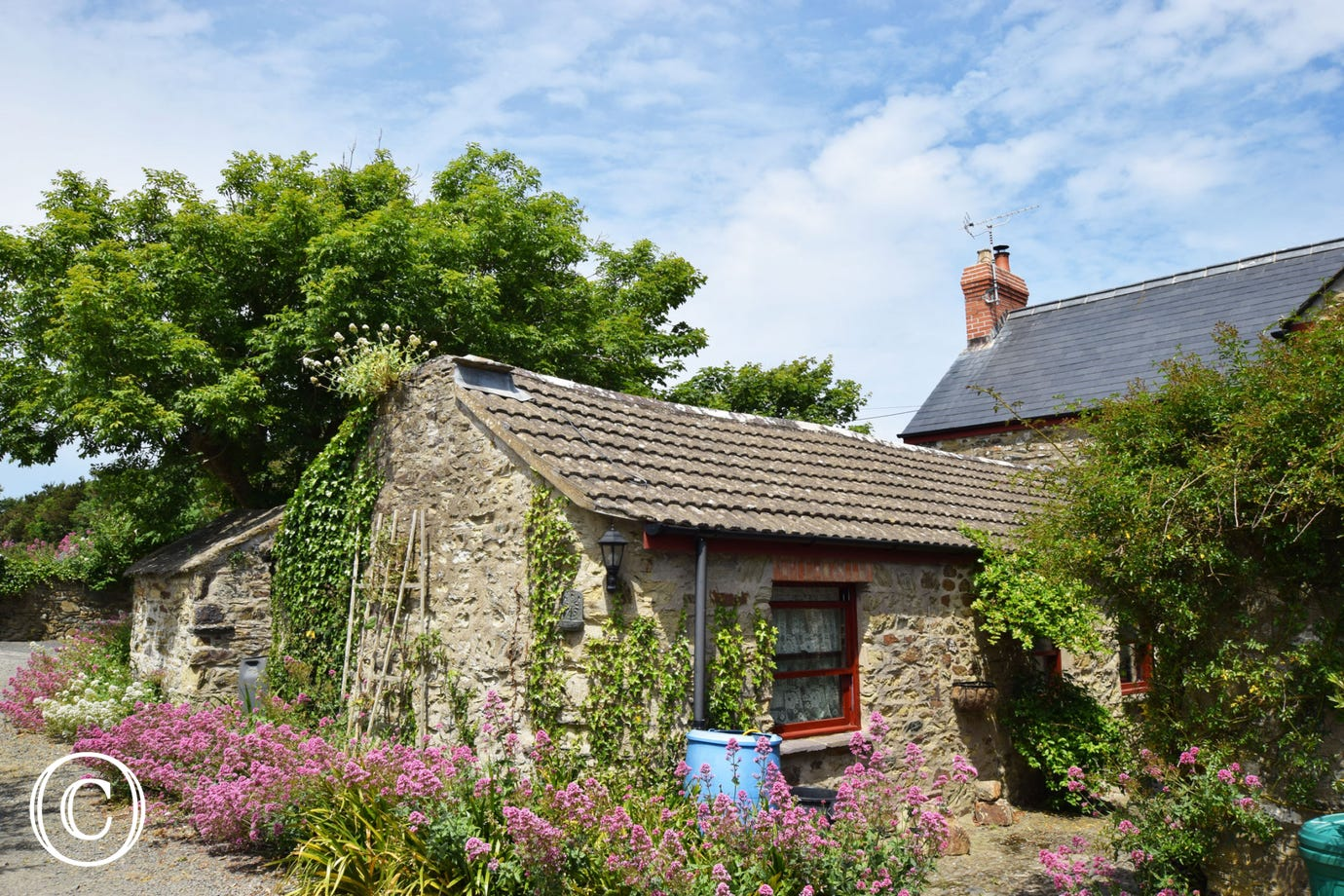 Ty Solfach - Holiday Cottage in Solva sleeping 2