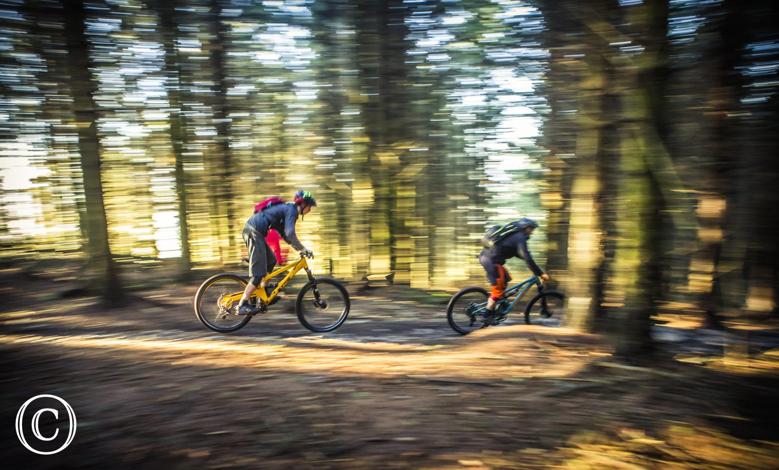 Mountain Biking at Llandegla Forest with One Planet Adventure