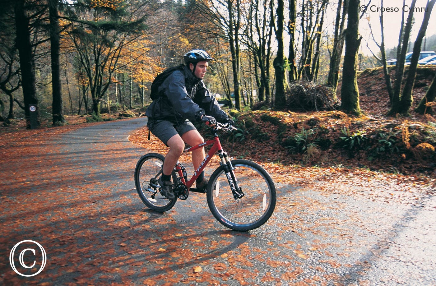 Numerous bike trails from the doorstep - including Lon Las Cymru