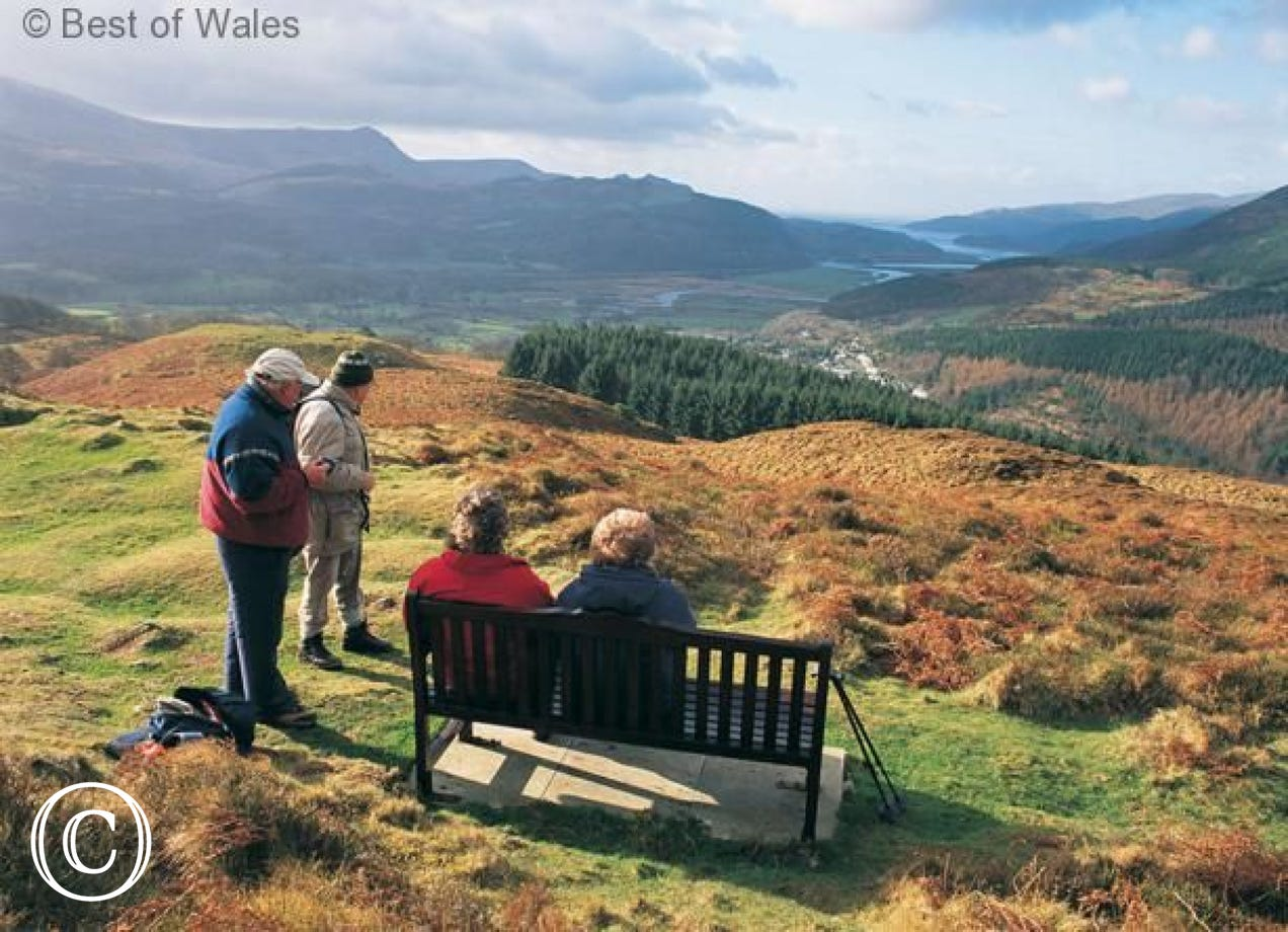 Precipice Walk, Dolgellau - a lovely walk just 3 miles from the cottage