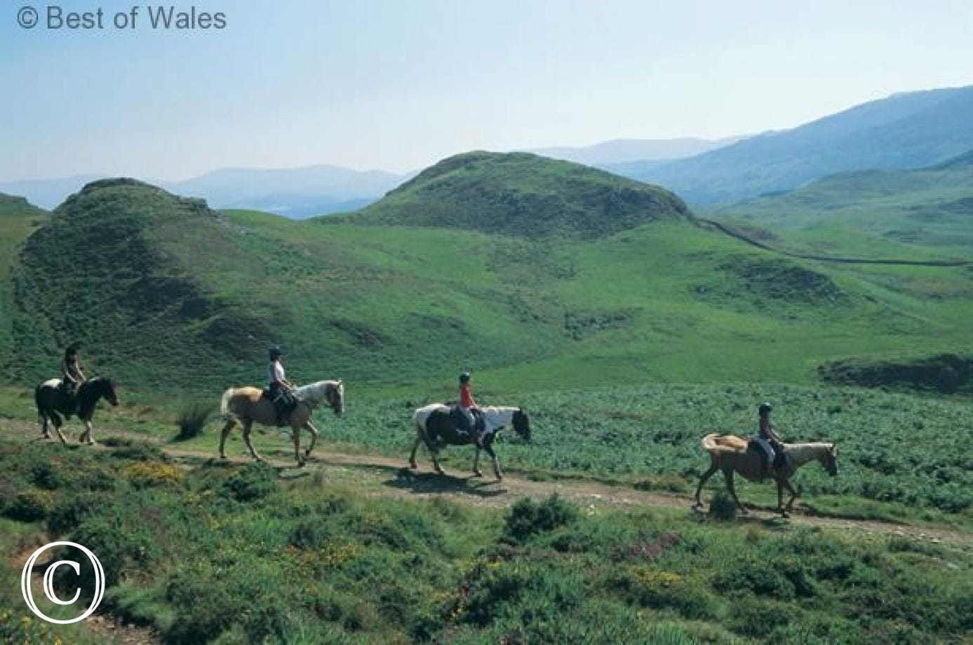Pony Trekking Centre, 11 miles from your Dolgellau holday cottage