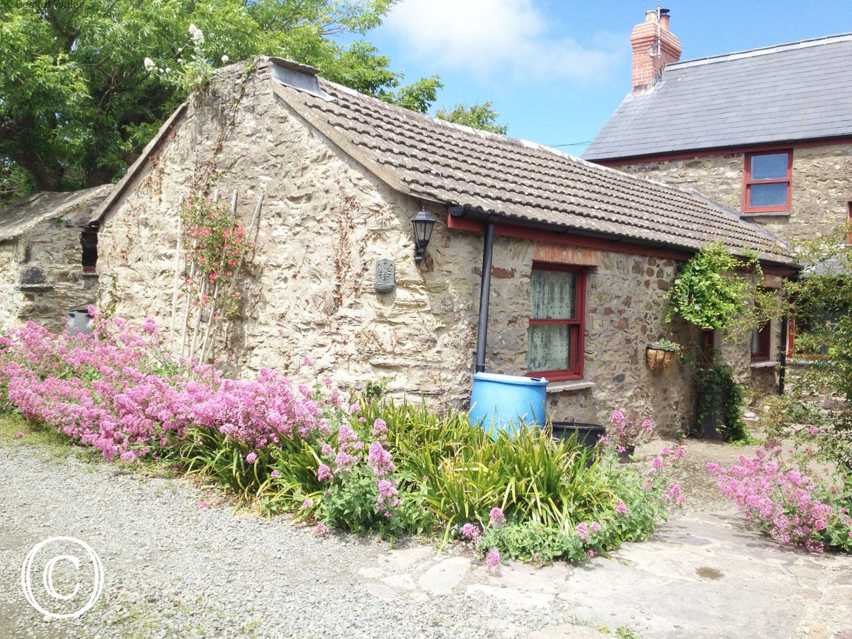 Cosy Cottage for 2 in Solva