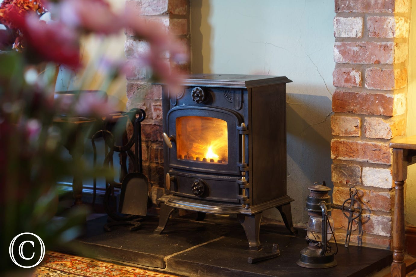 Enjoy a cosy night in in front of the fire with a good film (logs provided)