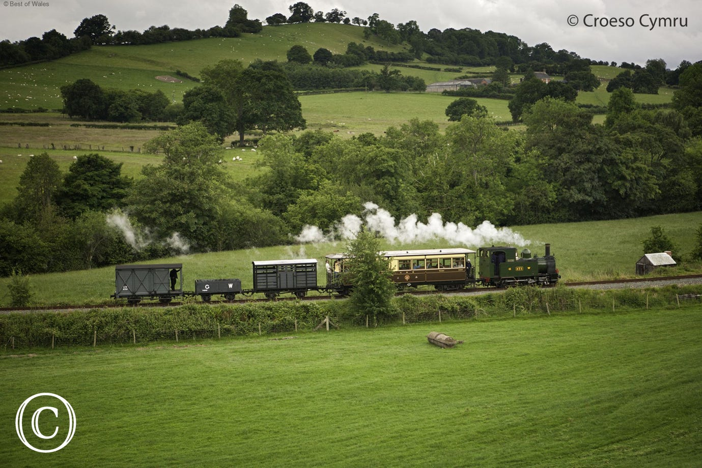 Steam train from Welshpool to Llanfair Caereinion