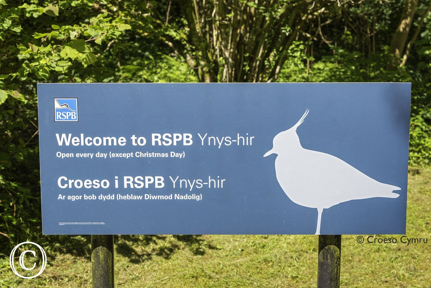 Ynys Hir RSBP Reserve - just one of the attractions on your doorstep