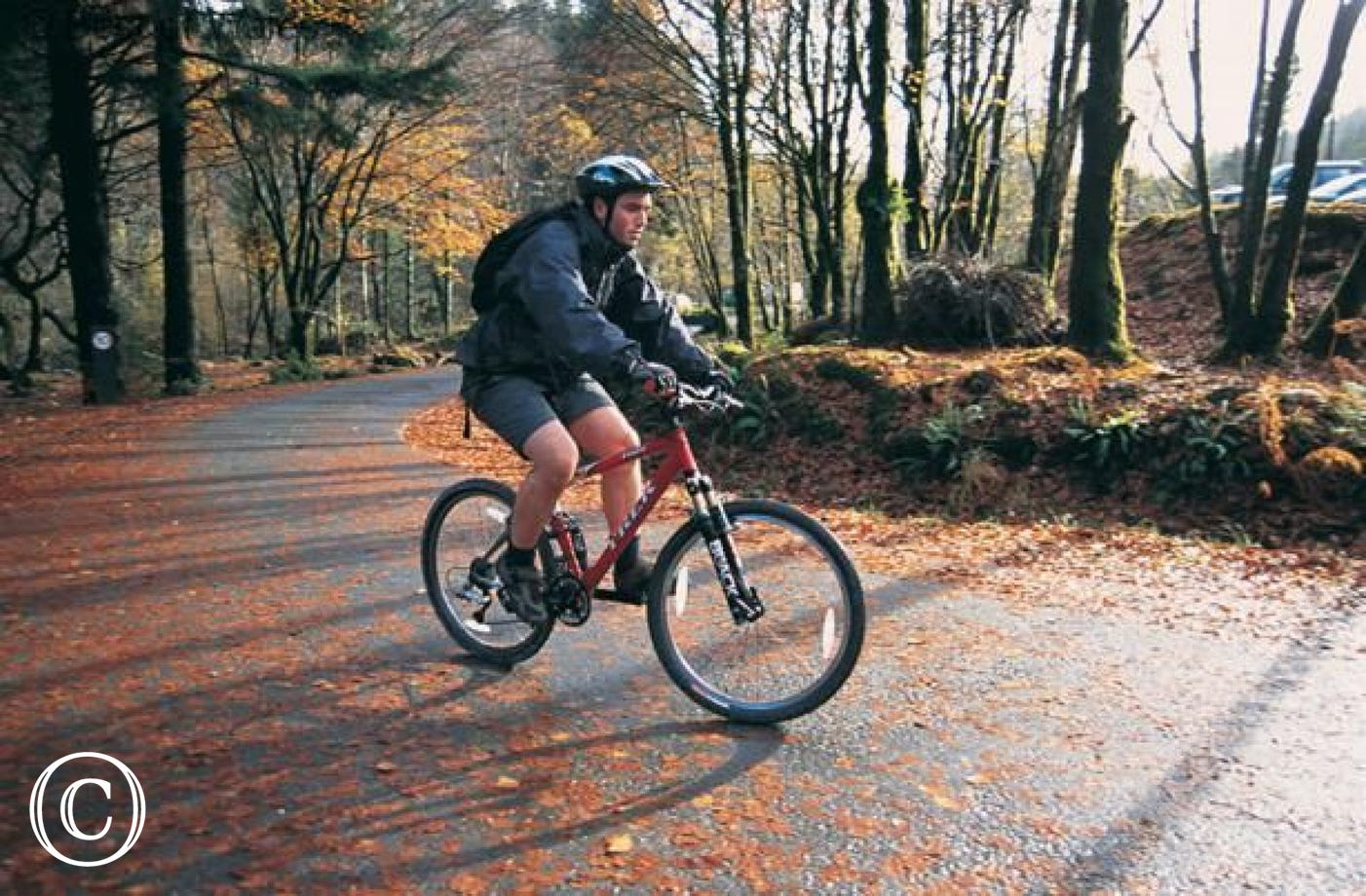 Dyfi Mountain Biking offers a range of mountain biking tracks (5 miles)