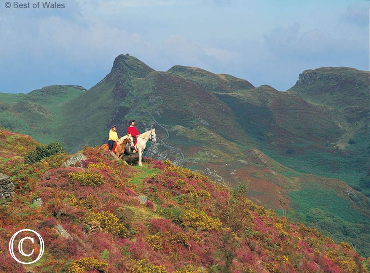 Pony trekking in Snowdonia, close to your Aberdovey holiday cottage