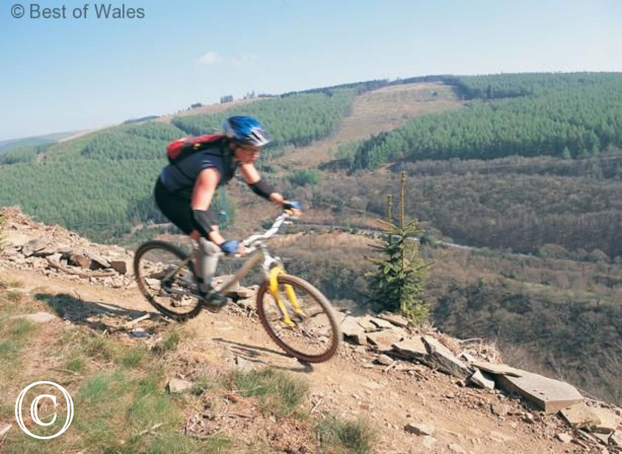 Some of the best mountain biking in Britain nearby